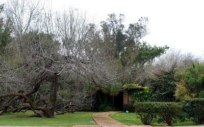 Midcentury Modern Homes in McAllen, Texas